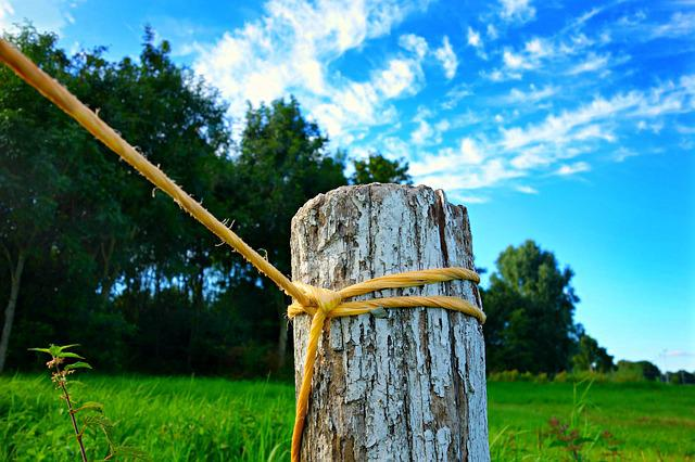 Landscape, Nature, Field, Grass, Post, Rope