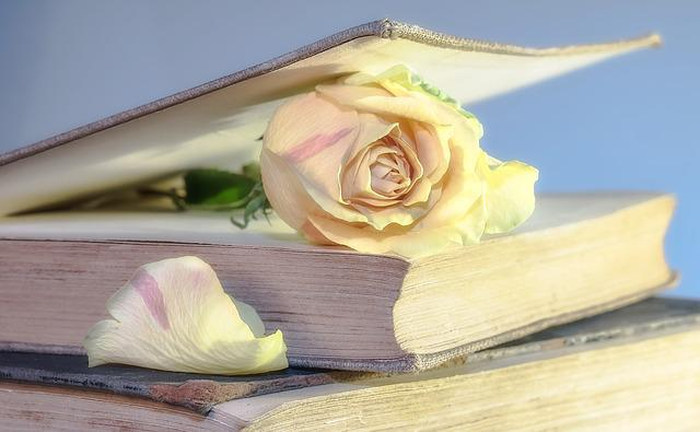 Rose, Book, Old Book, Blossom, Bloom, Rosenblatt, Used