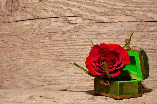 Rose, Red, Flower, Blossom, Bloom, Treasure Chest