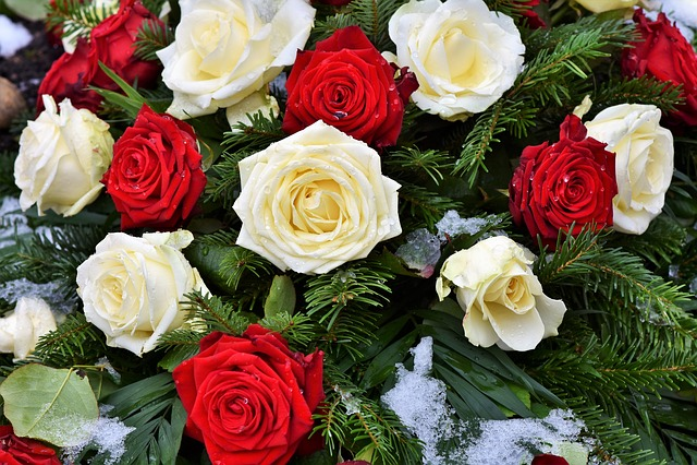 Roses, Rose Arrangement, Rose Bloom, Red Rose