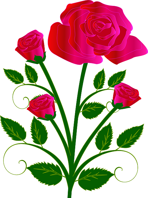 Bouquet, Flower, Rose, Red, Love