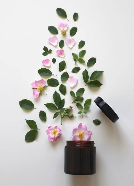 Natural Cosmetics, Pink, Rose, Cosmetics, Beauty, Close