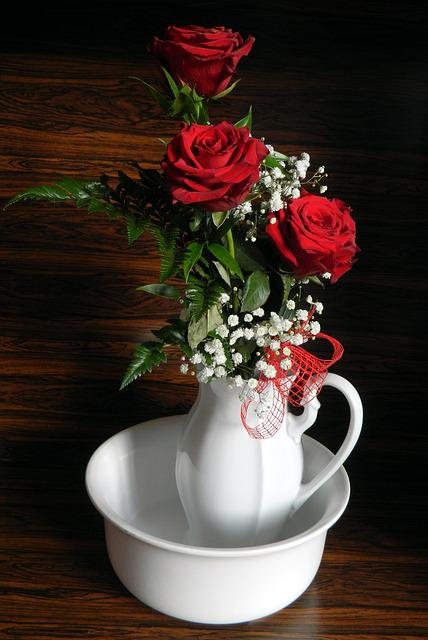 Rose, Flower, Rose Flower, Nature, Red Rose, Romantic