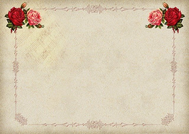 Rose, Frame, Background Image, Blossom, Bloom