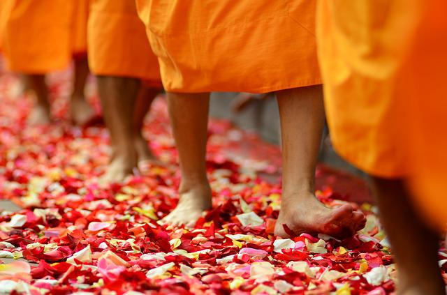 Buddhism, Monks, Buddhists, Walk, Rose Petals, Orange