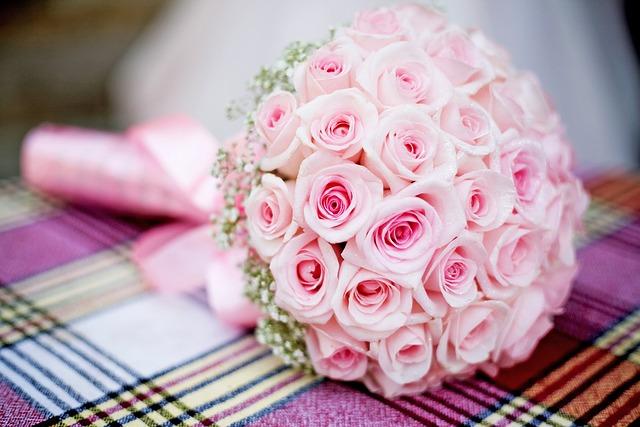 Rose, Roses