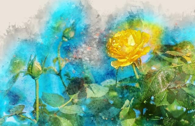 Flower, Nature, Leaf, Flora, Summer, Rose, Beautiful