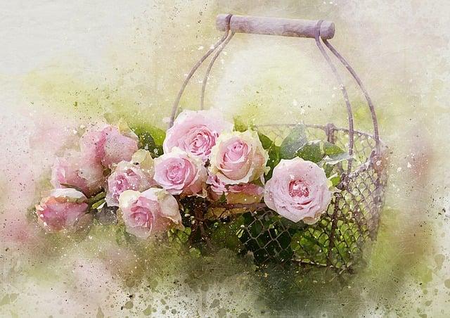 Watercolor Roses And Basket, Castleguard, Rose