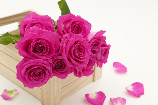 Bouquet, Bouquet Of Roses, Roses, Flowers, Love