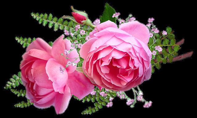 Flowers, Pink, Roses, Fern, Arrangement, Greeting Card