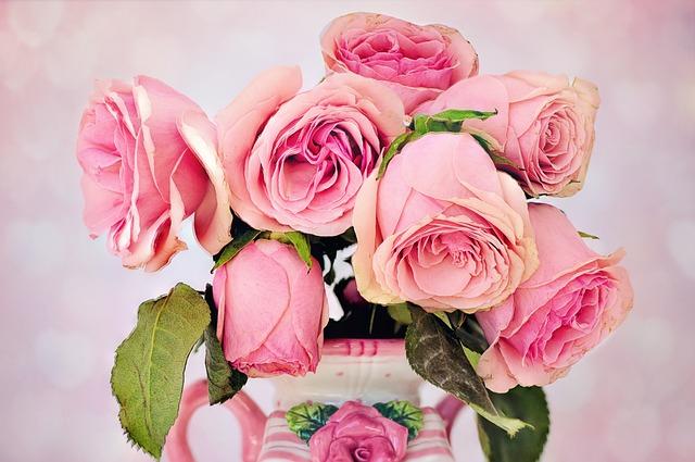 Roses, Flowers, Floral, Love, Petal, Pink, Vase