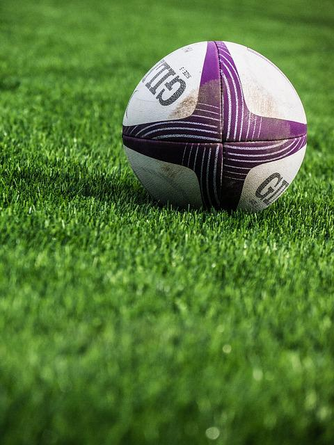 Rugby, Sport, Ball, Grass, Leisure, Green
