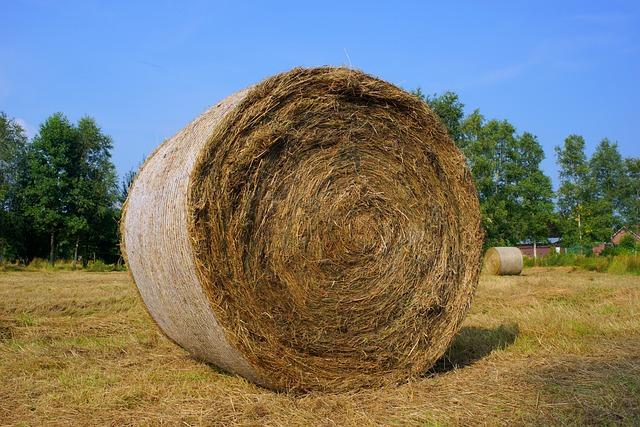 Harvest, Rundballepresser, Hay, Field, Summer, Food