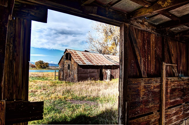 Rural, Autumn, Fall, Box Car, Cabin, Boxelder