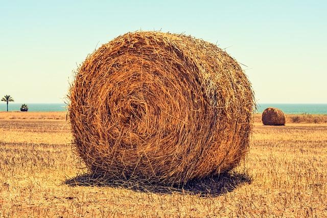 Hay Bale, Field, Agriculture, Rural, Farming, Farm