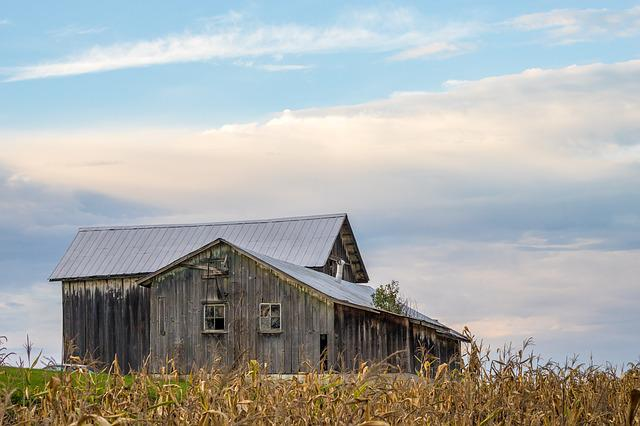 Barn, Farm, Rural, Farming, Field, Countryside
