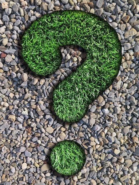 Question, Advisor, Rush, Pebbles, Question Mark, Nature