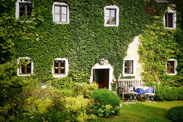 Home, Architecture, Family, Rush, Garden, Ivy, Old