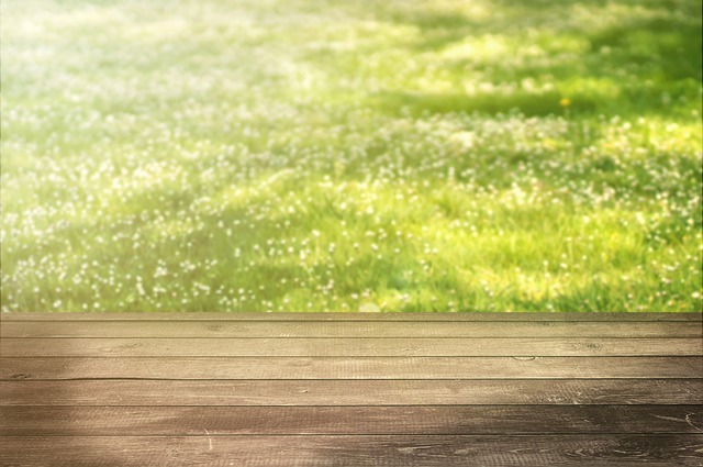 Background, Meadow, Wood, Rush, Spring, Spring Meadow