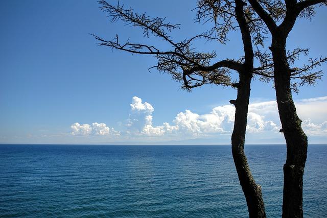 Baikalsee, Russia, Irkutsk, View, Lake, Baikal, Trees