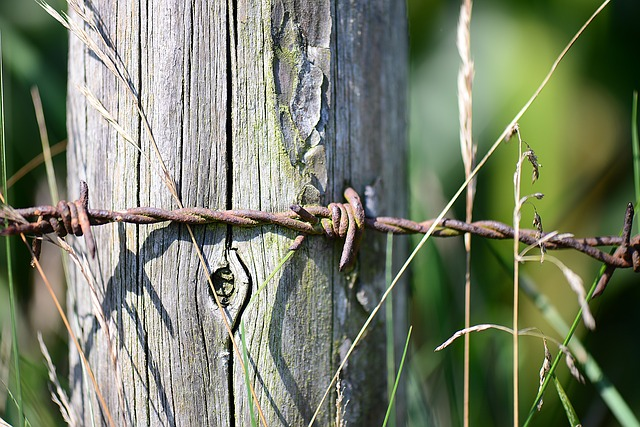 Barbed Wire, Rusty, Post, Weathered, Pasture Fence