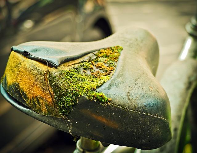 Bike, Saddle, Wheel, Bicycle Saddle, Cycling