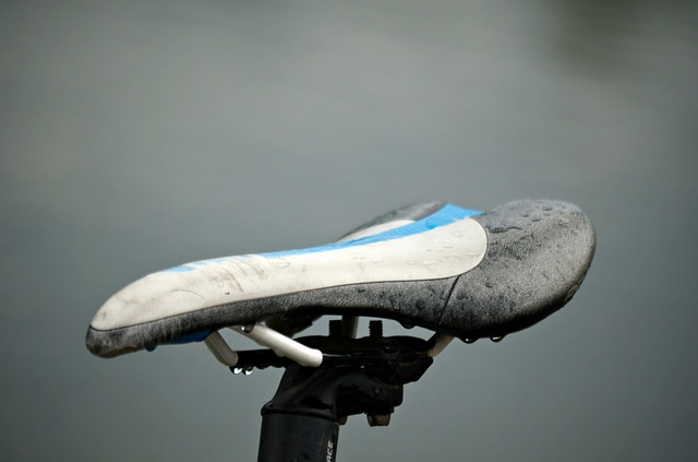 Fitness, Rain, Wheel, Bike, Saddle