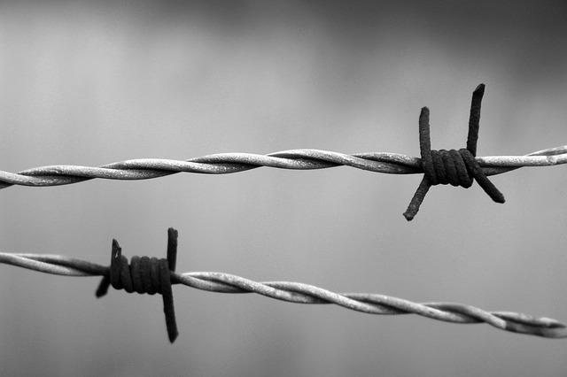 Barbed Wire, Rust, Rusty, Wire, Bound, Twisted, Sadness