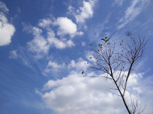 Sky, Said, Reality, Lantian Color