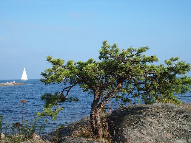 Sail, Archipelago, Sweden, Boats, Booked, Loneliness