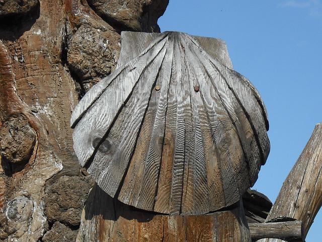 Saint Jacques De Compostela, Shell, Symbolism