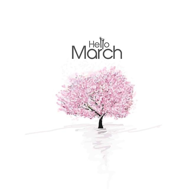 Painting, Cherry Blossoms, Sakura, 3 Months, Cute