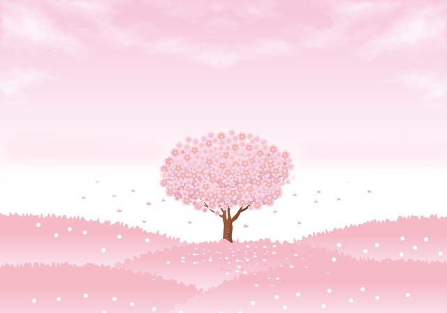 Spring Background, Sakura Tree, Cherry Tree, Sakura
