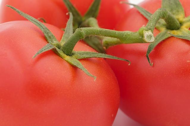 Tomatoes, Vegetables, On The Vine, Salad, Food, Eat