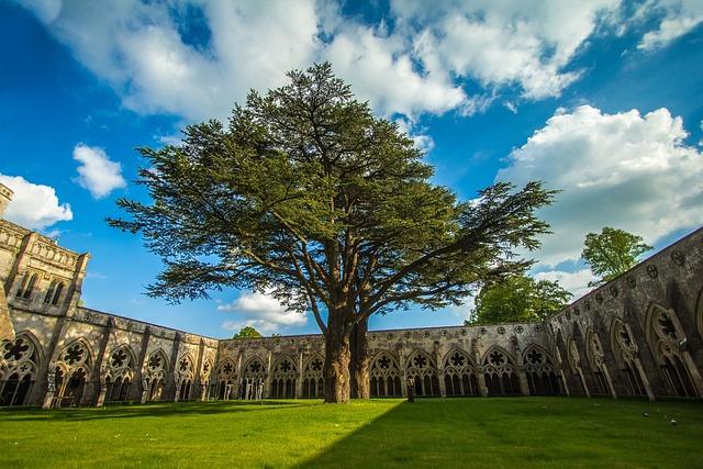 Salisbury, Architecture, England, Cathedral, Garden