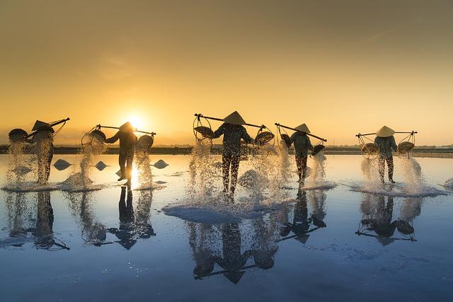 Salt Harvesting, Vietnam, Hon Khoi, Salt Field, Salina