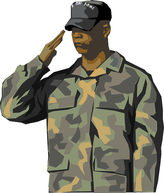 Soldier, Saluting, Salute, Man, Person, General