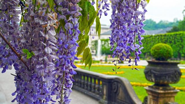 Salzburg, Mirabell Park, Mood