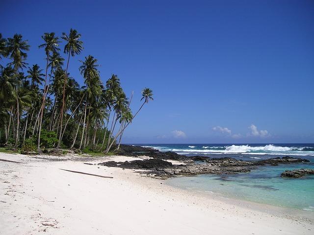 Palm Trees, Beach, Beautiful Beach, Sand Beach, Samoa