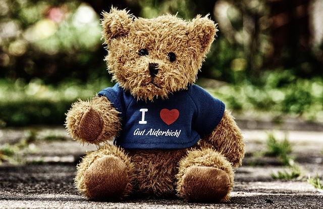 Teddy, Good Aiderbichl, Sanctuary, Animals, Bear, Funny
