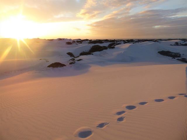 Beach, Dawn, Sand, Sunrise, Panorama, Mood, Shadow