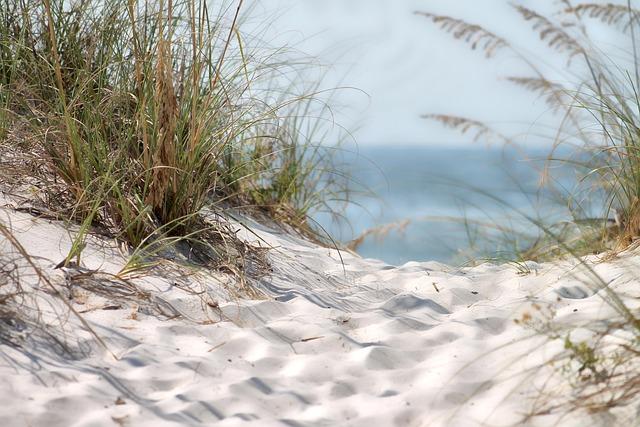 Beach, Sand, Sandy, Summer, Summer Sea, Nature, Coastal