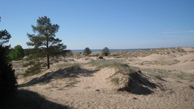 Yyteri, Pori, Beach, The Dunes, Sand, Spring, Desert