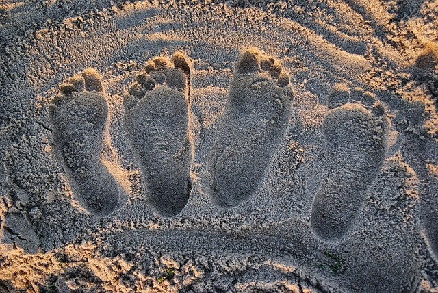 Footprints, Beach, Light, Sand, Sun