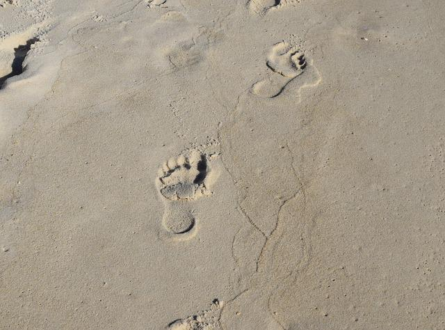 Footprints In The Sand, Footprints, Child, Sand, Beach