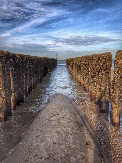 Post, Beach, Water, Sea, Wood, Sand, Domburg, Zeeland
