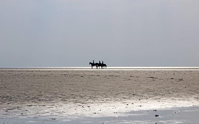 North Sea, Beach, Nordfriesland, Sky, Sand, Sea