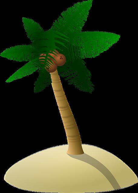 Coconut Tree, Palm Tree, Dune, Tree, Island, Coco, Sand