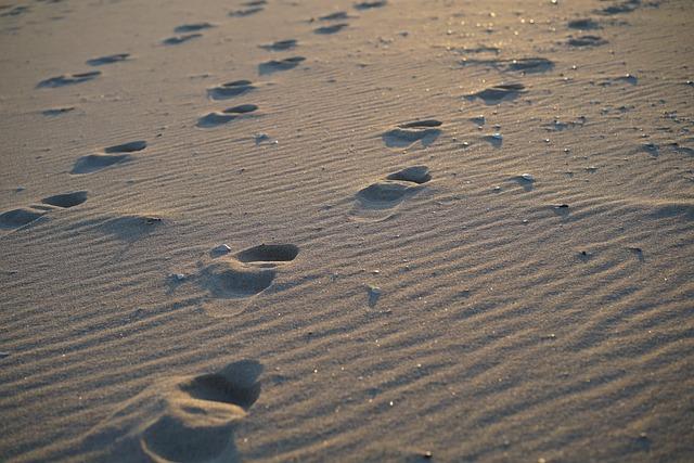 Beach, Sea, Footprint, Sand, Winter Sea, Sandy