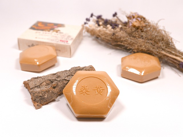 Herbal Soap, Sanghwang Mushroom Soap, Beauty Soap, Bath